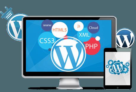 Dynamic Website Design, Development, Domain Registration & Web hosting Deal